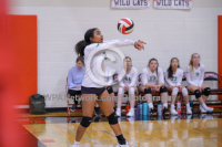 Gallery: Volleyball Shorewood @ Archbishop Murphy
